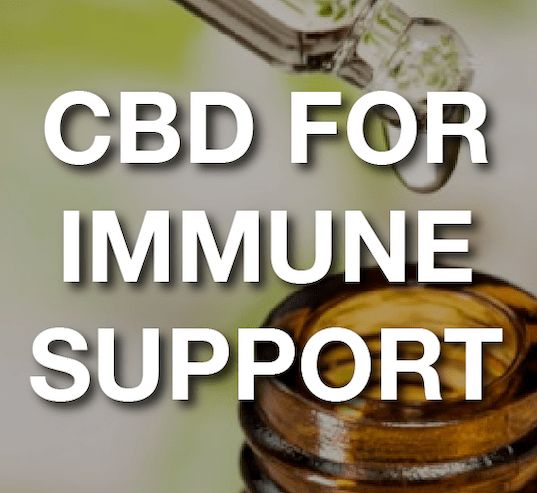 CBD For Immune Support: Securing Senior Citizens Through Lab Checked CBD