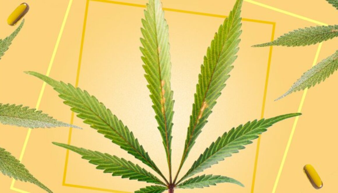 Hemp Mythbusters: 5 Myths About The Plant That Need To Be Debunked